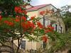 <b>The house behind the church in Coral Bay</b>   (Jul 01, 2002, 09:29am)