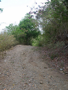 A look at the Johnny Horn Trail   (Jul 01, 2002, 08:52am)