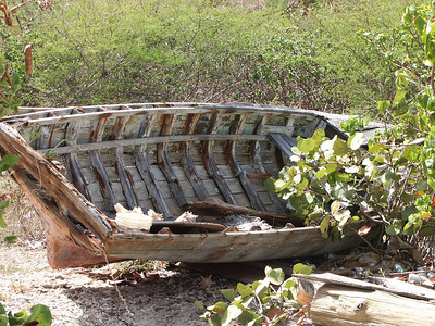 Old boat used by Conrad to store Conch shells   (Jul 03, 2002, 09:45am)