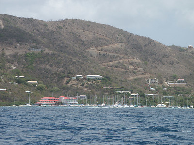 A forest of masts on the shore of Tortola   (Jul 03, 2002, 11:08am)