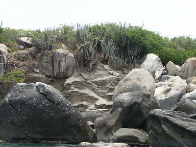Cactus on hillside above Virgin Gorda rocks   (Jul 04, 2002, 11:22am)