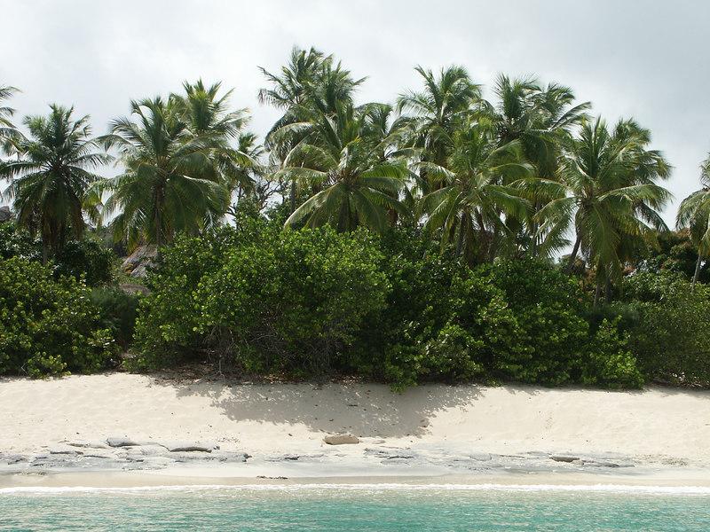 <b>Beach on Big Trunk Bay, Virgin Gorda</b>   (Jul 04, 2002, 10:34am)