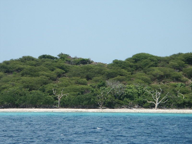 <b>Isolates beach on Mingo Cay</b>   (Jul 05, 2002, 01:41pm)