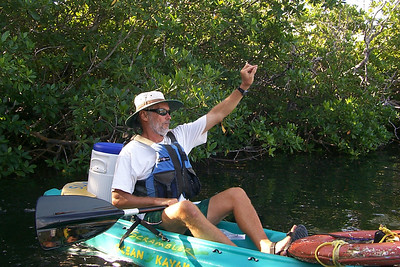Our Guide in the Marine Sanctuary   (Dec 25, 2000, 09:22am)