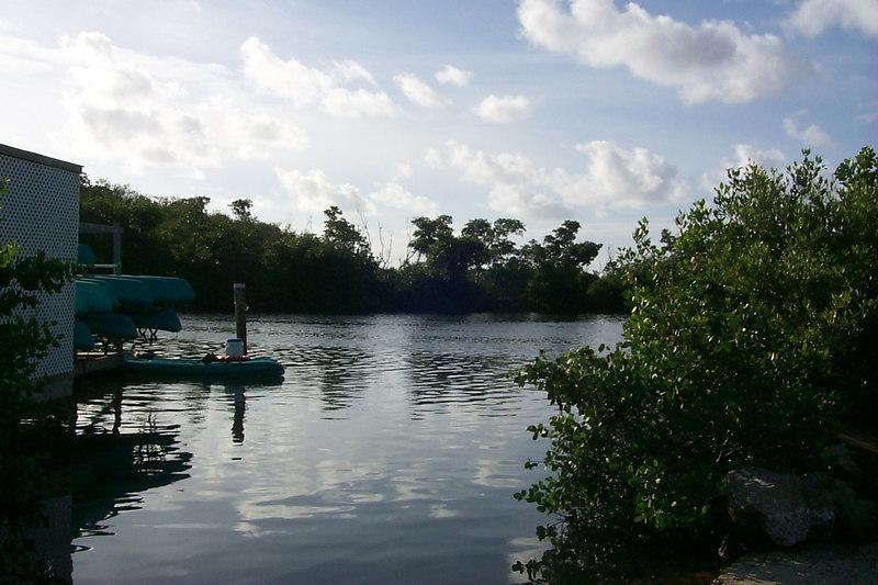 <b>Marine Sanctuary</b>   (Dec 25, 2000, 08:34am)