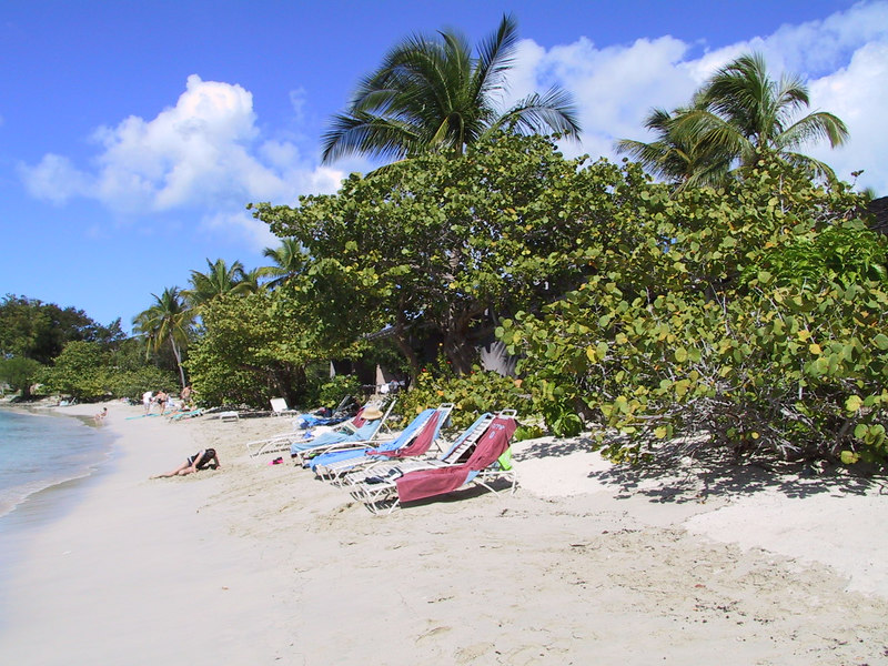 <b>Caneel Bay Beach</b>   (Dec 28, 2000, 12:55pm)