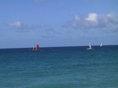Floatilla Leaving Each Morning   (Dec 29, 2000, 09:37am)