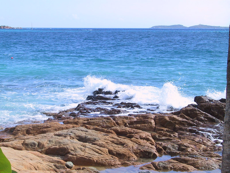 <b>Surfs up near Morningstar Beach</b>   (Dec 29, 2000, 01:37pm)