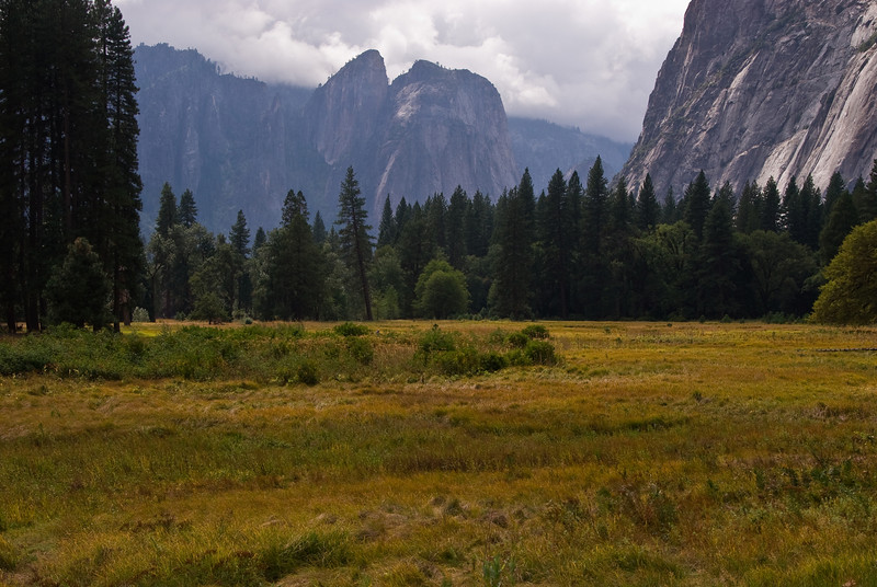 <b>Meadows in Yosemite Valley</b>   (Sep 20, 2007, 01:18pm)