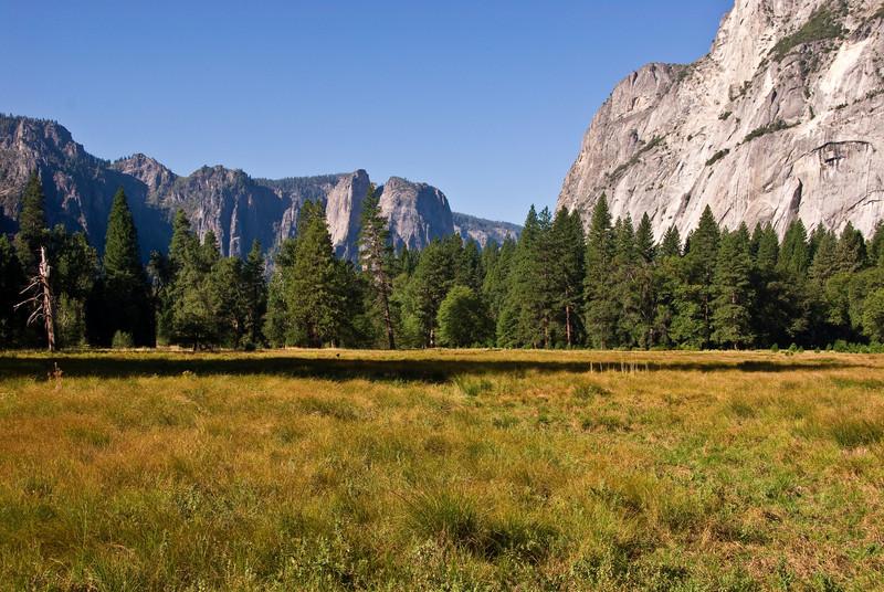 <b>Meadow in Yosemite Valley</b>   (Sep 18, 2007, 08:35am)