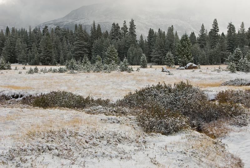 <b>Light snow fall in Tuolumne Meadows</b>   (Sep 20, 2007, 08:34am)