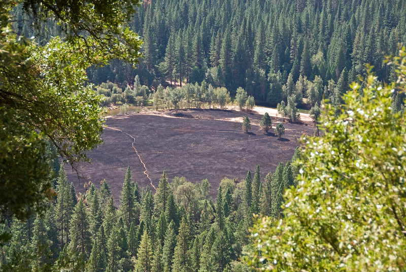 <b>Yosemite valley burnt meadows</b>   (Sep 21, 2007, 10:34am)  Seen from Yosemite Falls Trail