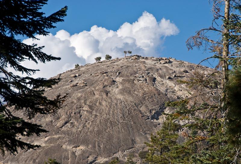 <b>Sentinel Dome through the trees</b>   (Sep 16, 2007, 03:33pm)