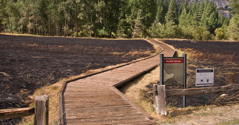 """<b>Meadows after controlled burn</b>   (Sep 20, 2007, 02:20pm)  The sign that says """"Meadow Damage"""" seems redundant after the burn."""