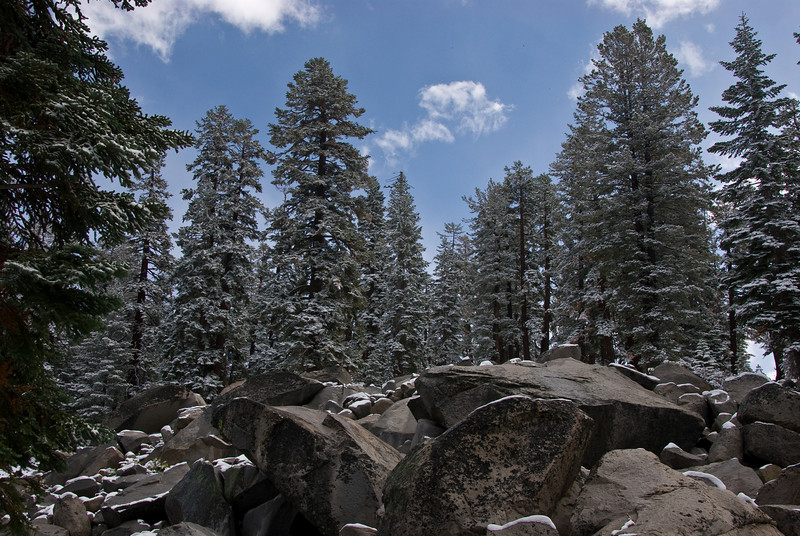<b>Rock pile and trees</b>   (Sep 20, 2007, 10:13am)  Along Tioga Road, after a light snowfall