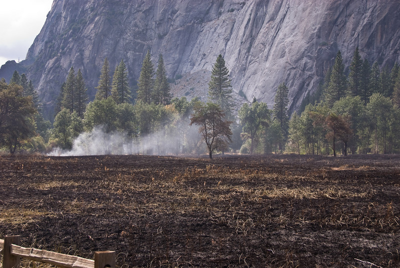 <b>Smoke and burnt meadow in Yosemite Valley</b>   (Sep 20, 2007, 02:20pm)  Part of the controlled burn of September 2007