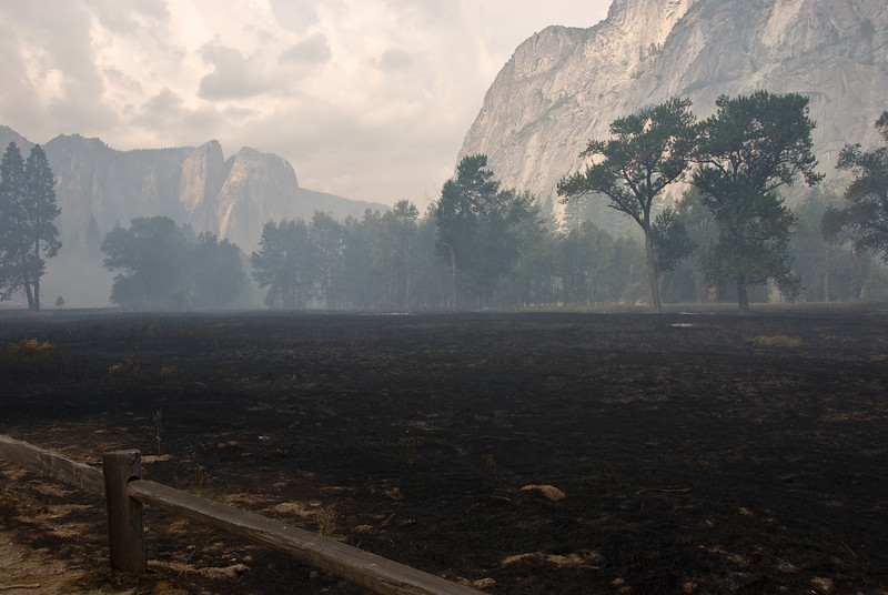 <b>Burnt meadows in Yosemite Valley</b>   (Sep 19, 2007, 08:23am)