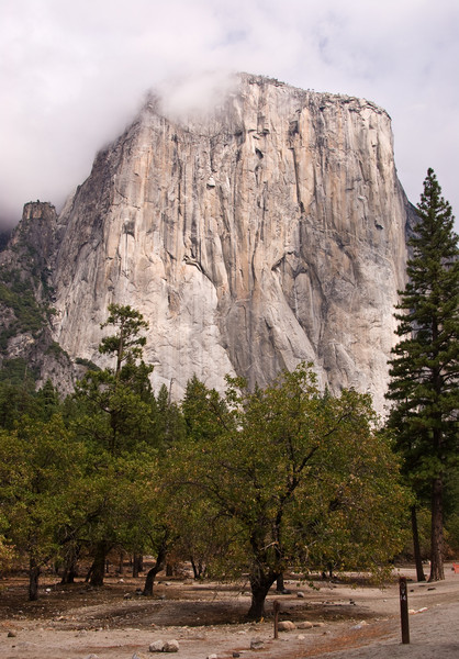 <b>El Capitan</b>   (Sep 20, 2007, 11:40am)