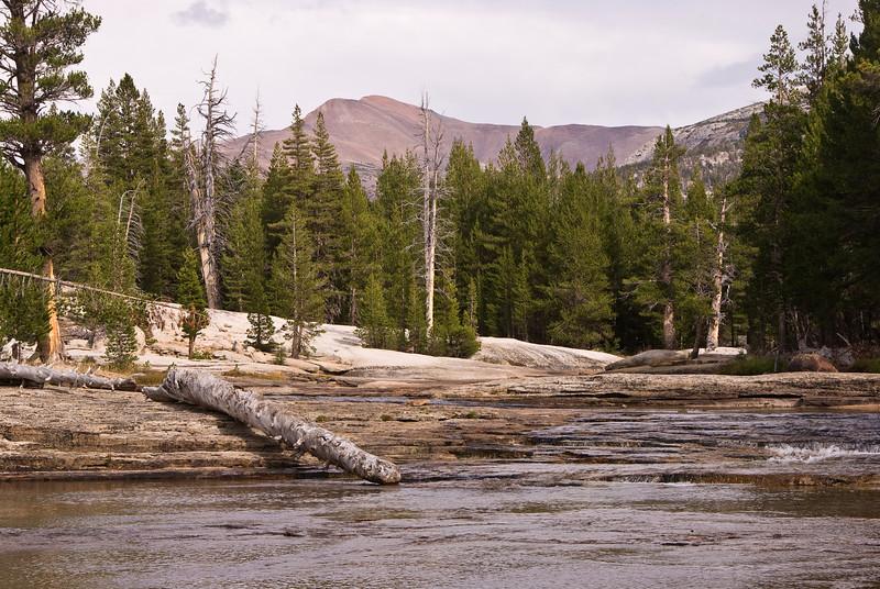 <b>Tuolumne River, Lyell Fork</b>   (Sep 19, 2007, 02:30pm)