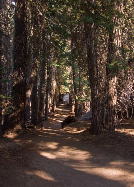 <b>The trail to Taft Point</b>   (Sep 16, 2007, 03:21pm)