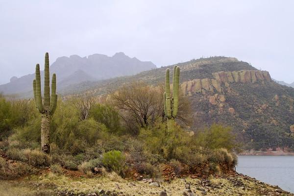 Arizona-Utah #2