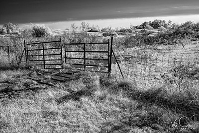 Empty Field Guarded by a Metal Gate