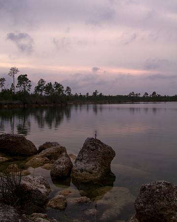 Pines Glade Lake - Everglade NP