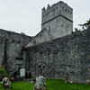 Muckross Abbey, Killarney National Park