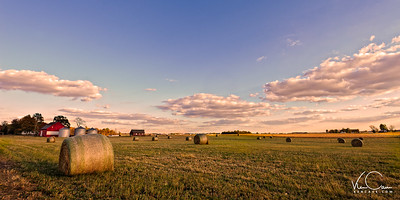 Wheat Bales scatterd in the Field of a Small Midwestern Farm