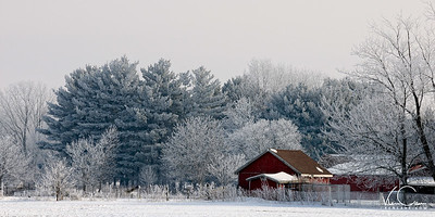 Farm with Frozen Fog