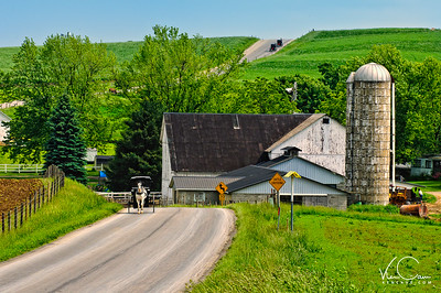 Horse and Buggy-Holmes County, Ohio