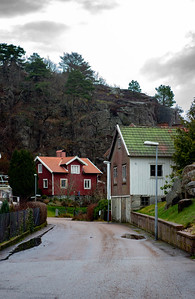 Swedish style houses