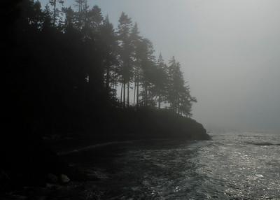 Washington State #2