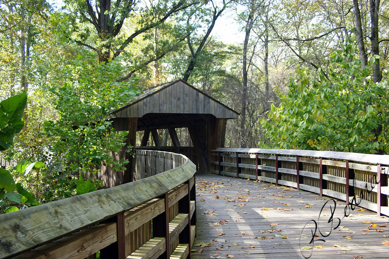 Photo By Robert Bodnar............ Covered Bridge Wildwood Park