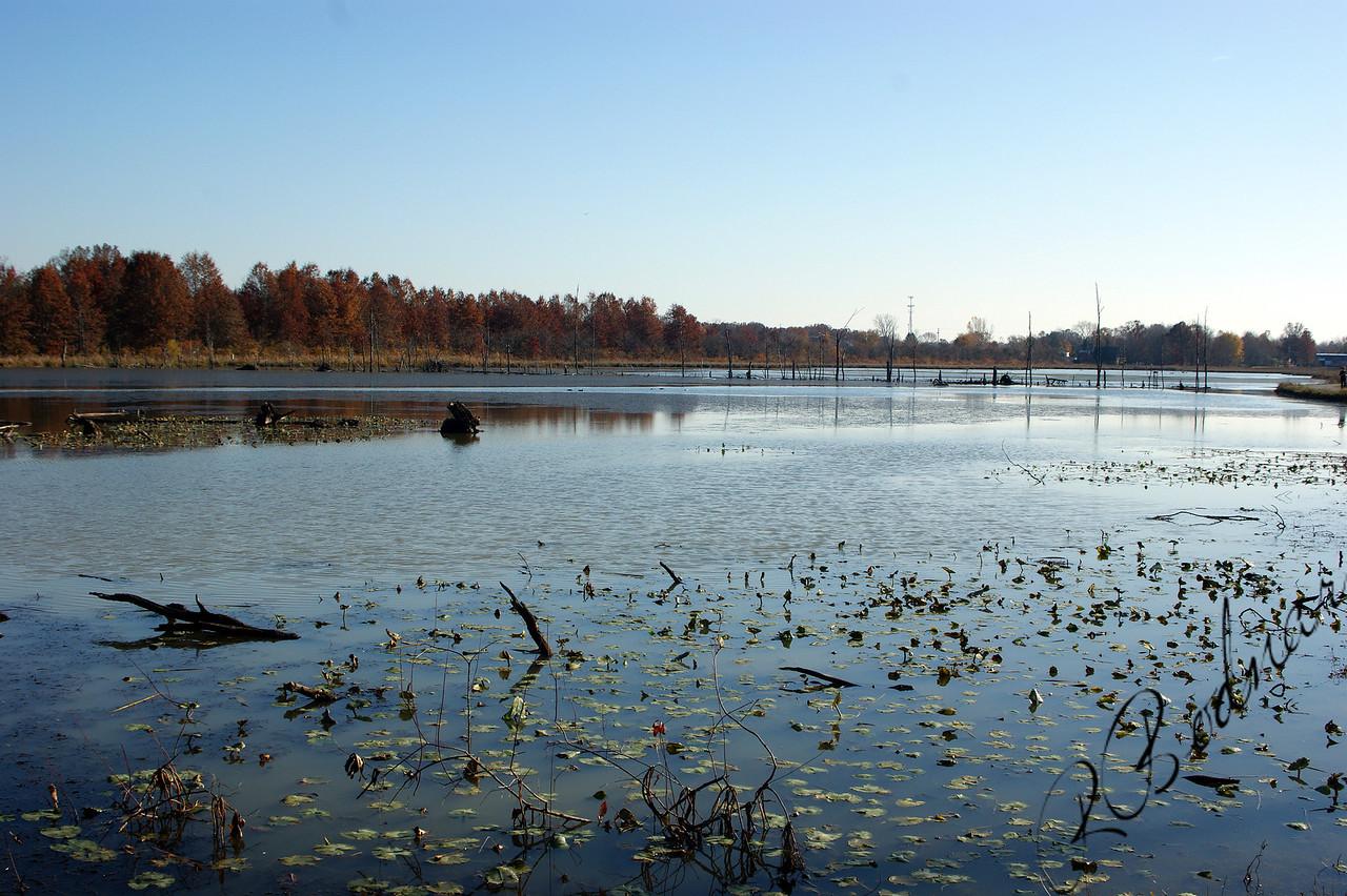 Photo By Robert Bodnar.................................Wildlife Lake at Sandy Ridge