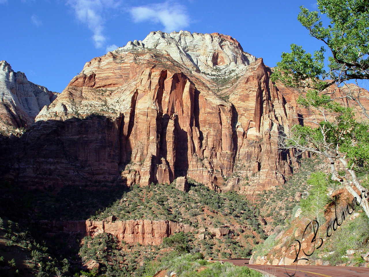 Photo By Robert Bodnar......................................Zion National Park landscape