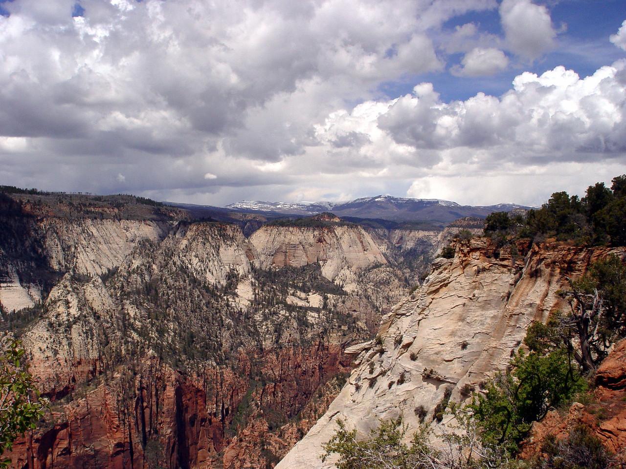 Photo By Robert Bodnar.......................................Zion National Park Landscape