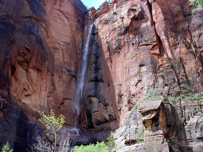 Photo By Robert Bodnar...................................Zion National Park Waterfall