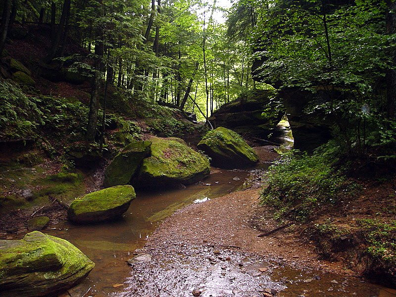 Photo By Robert Bodnar.........................................Hocking Hills SP, Ohio