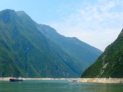 Green Hues Along the Yangtze