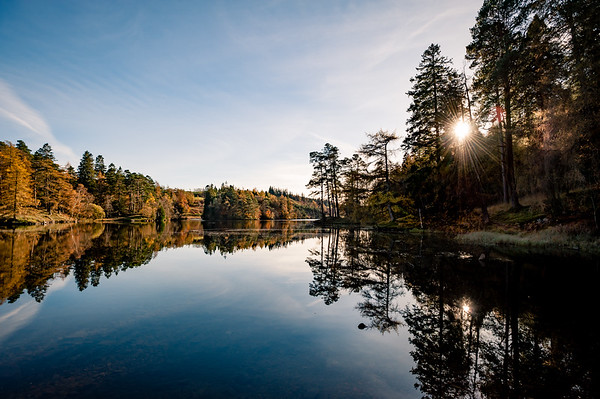 Autumn at Tarn Hows