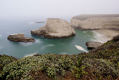 Looking down on Shark Fin Cove