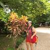 Palenque gardens