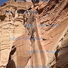Above the Siq, Petra