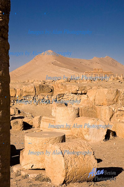 Sy28-View from the Temple of Bel, Palmyra