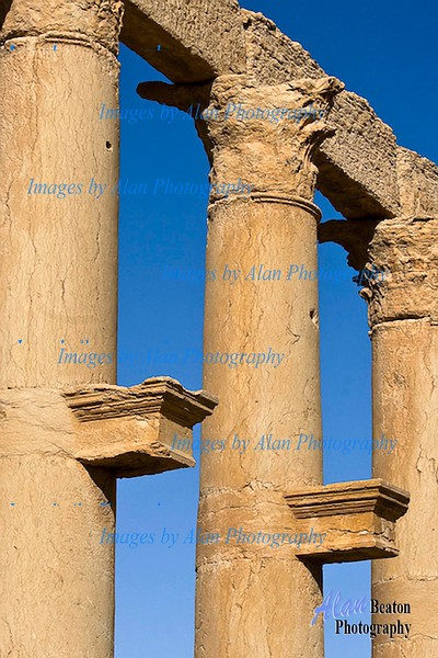 Sy32-Pillars of the Great Colonnade, Palmyra