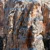 Colourful Ilhara  Gorge, Cappadocia