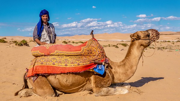 A Moroccan man is selling camel rides in the desert to tourists. The camel is kneeling for a passenger to climb onto its back.