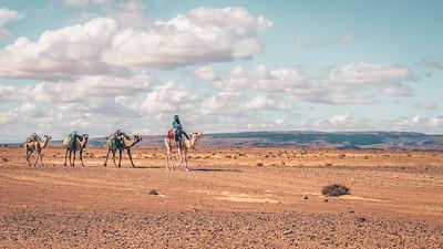The edge of the Sahara Desert, Morocco.