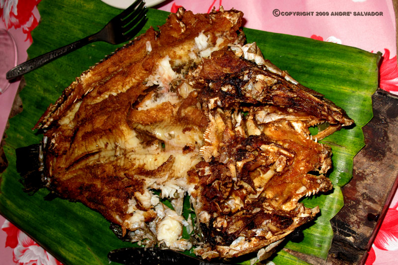 Broiled Mahi-Mahi fish.
